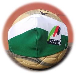 Infos zur Fussball Saison 2020/2021 … Erwachsenenwettbewerbe !!